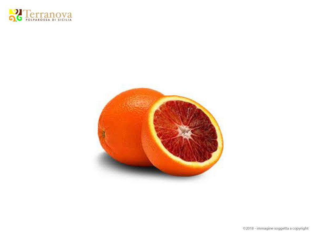Tarocco Gallo Blood Orange Normal and for Juice